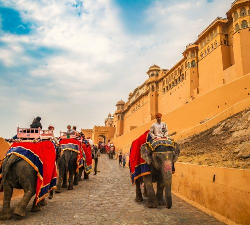 Amber Fort in Jaipur Rajasthan