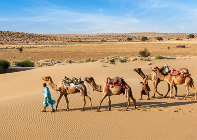 Exploring Jaisalmer | Camps, Camel Safari & More| Rajasthan